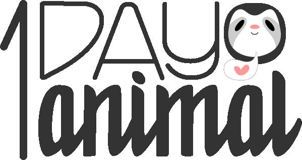 1day1animal – Art Challenge